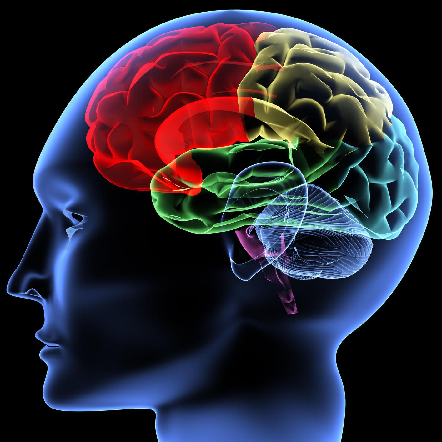 İnternet Dünyasında Nöroloji