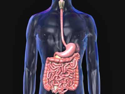 Cerrahlar Ameliyat Öncesi 3D Organları İnceliyor