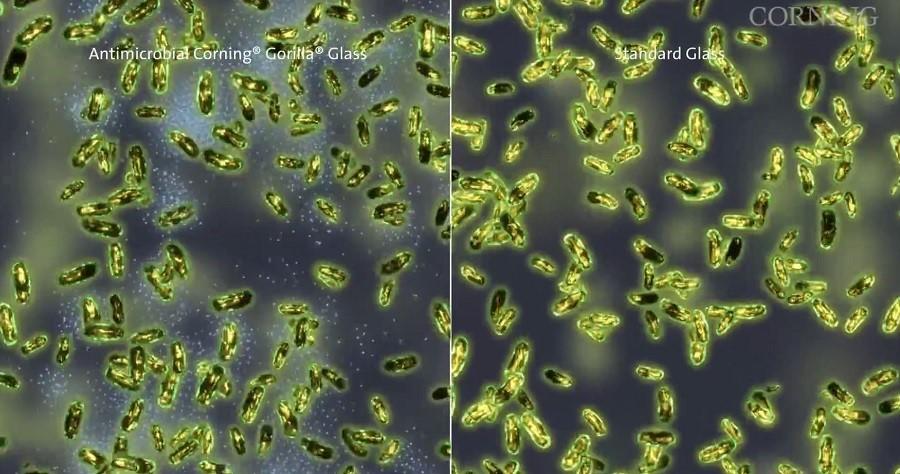 antibakteriyal