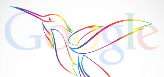 görsel_hummingbird