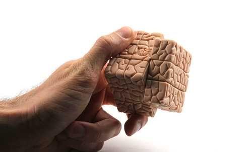 Google'ın Beyin Yedekleme Projesi