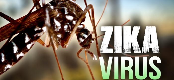 Büyüyen Zika Virüsü Tehlikesine Google'dan Müdahale