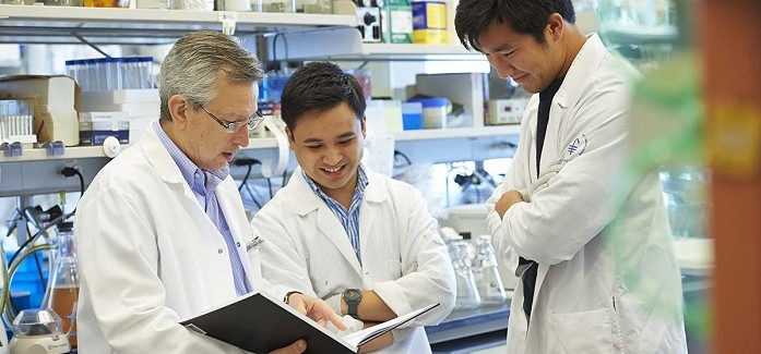 MSK ve Medidata Kanser Araştırması İçin Ortaklığa Girdi