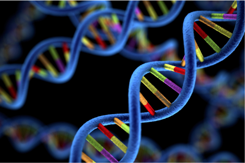Genomikler